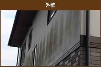 カビの生えた外壁