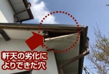 軒天からの小屋裏に繋がる穴