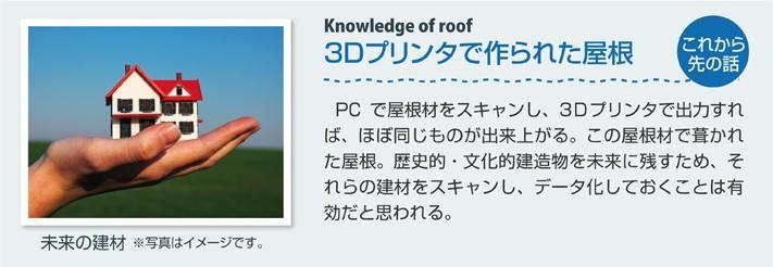 3Dプリンタで作られた屋根(未来)
