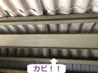 伊賀市 倉庫の屋根 カビ