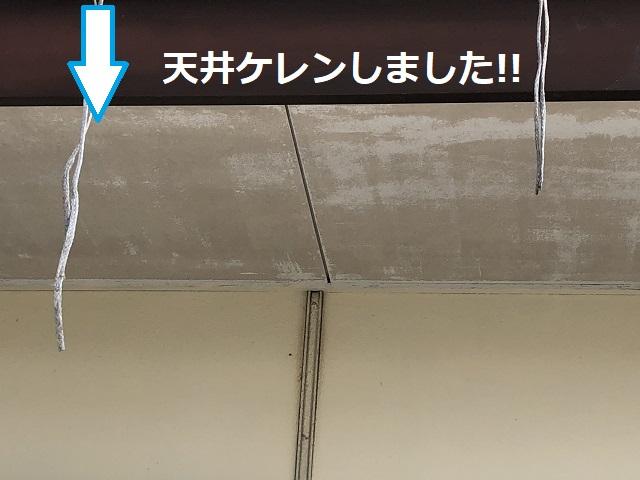 天井 ケレン22