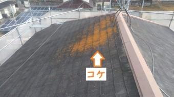 名張市 スレート屋根 コケ