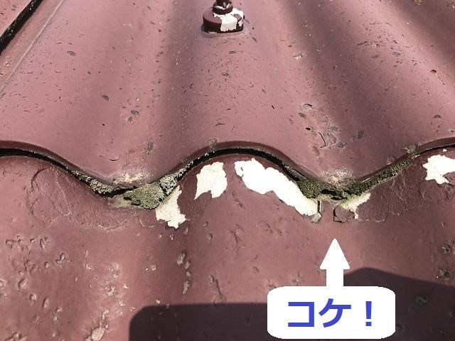 伊賀市 スレート屋根 コケ