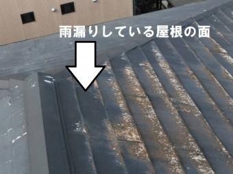雨漏り 屋根の面