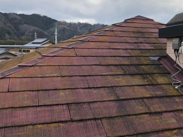 屋根 下見1