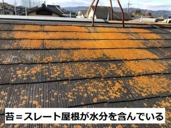 名張市 スレート屋根 黄色い苔